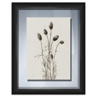 PTM Images Wild Flower 19-Inch x 23-Inch Print Wall Art in Black