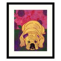 Amanti Art® Angela Bond Animals Dogs 17-Inch x 20-Inch Acrylic Framed Print in Black