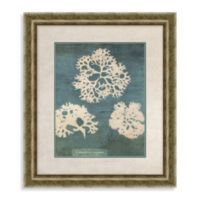 Coral Framed Wall Art I