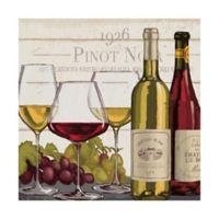 Trademark Fine Art Rustic Wine Tasting III 14-Inch Square Canvas Wall Art