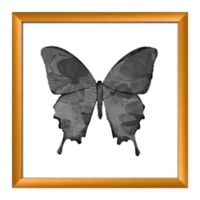 PTM Images Black Butterfly 18-Inch Square Framed Wall Art (Set of 2)