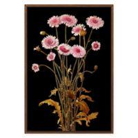 PTM Images Gold Pink Flower Framed Canvas Wall Art