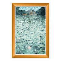 PTM Images Lotus Scene Framed Wall Art