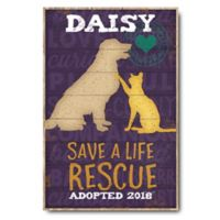Courtside Market™ Save Lives Rescue 12-Inch x 18-Inch Canvas Wall Art
