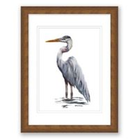 Blue Heron 17.5-Inch x 14.5-Inch Framed Print Wall Art