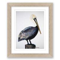 Pelican 18-Inch x 15-Inch Framed Print Wall Art