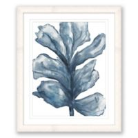 Watercolor Sealife 20-Inch x 24-Inch Framed Print Wall Art