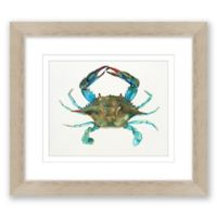 Blue Crab 14-Inch x 16-Inch Framed Print Wall Art