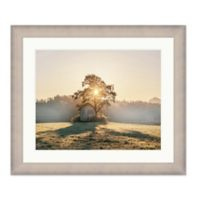 Bee & Willow™ Home Landscape 41.25-Inch x 35.25-Inch Paper Framed Print
