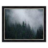 Trees & Mist Framed Print Wall Art