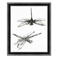 Dragonfly 19-Inch x 23-Inch Paper Framed Print in Black/white