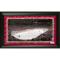 NHL Arizona Coyotes Signature Rink Photo Mint