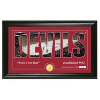 NHL New Jersey Devils Silhouette Photo Mint