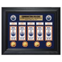 NHL Edmonton Oilers Deluxe Banner Photo Mint
