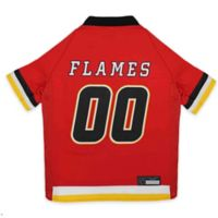 NHL Calgary Flames Extra Small Dog Jersey