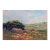 Masterpiece Art Gallery Poppy Hill 24-Inch x 36-Inch Canvas Wall Art