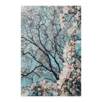 Masterpiece Art Gallery Signs of Spring 24-Inch x 36-Inch Canvas Wall Art