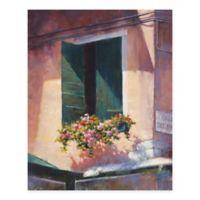 Masterpiece Art Gallery Green Shutters 16-Inch x 20-Inch Canvas Wall Art