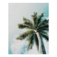 Masterpiece Art Gallery Skyward Palm 22-Inch x 28-Inch Canvas Wall Art