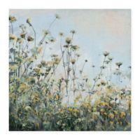 Masterpiece Art Gallery Growing Wild 24-Inch x 24-Inch Canvas Wall Art