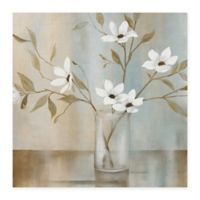 Masterpiece Art Gallery Pastel Garden II 30-Inch x 30-Inch Canvas Wall Art