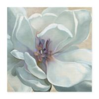 Masterpiece Art Gallery Iridescent Bloom I 35-Inch x 35-Inch Canvas Wall Art