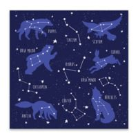 Lot26 Studio Constellation Animals 18-Inch Square Wrapped Canvas