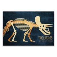 Lot26 Studio Triceratops Dinosaur 36-Inch x 24-Inch Wrapped Canvas