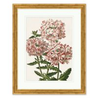 White and Red Florals I Framed Print Wall Art