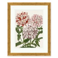 White and Red Florals II Framed Print Wall Art