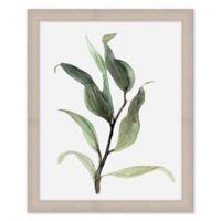 Elegant Botancial 18-Inch x 22-Inch Framed Wall Art