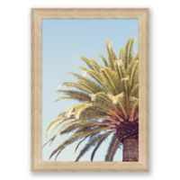 South Pacific 31.5-Inch x 22.5-Inch Framed Print Wall Art