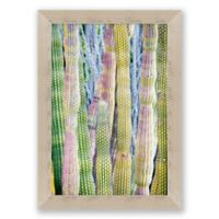 Cacti 29.25-Inch x 40.25-Inch Paper Framed Print Wall Art