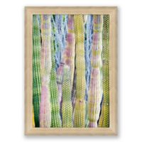Cacti 22.5-Inch x 31.5-Inch Paper Framed Print Wall Art