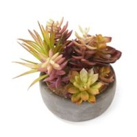 Elements by Pfaltzgraff® Potted Artificial Succulent Plants