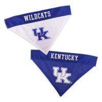 University of Kentucky Large/Extra Large Reversible Pet Collar Bandana
