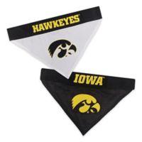 University of Iowa Large/Extra Large Reversible Pet Collar Bandana
