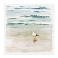 Trademark Fine Art Victoria Borges Seagull Cove II 14-Inch Square Wrapped Canvas Wall Art