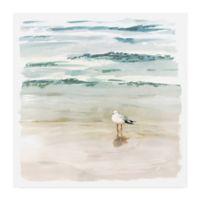 Trademark Fine Art Victoria Borges Seagull Cove II 35-Inch Square Wrapped Canvas Wall Art