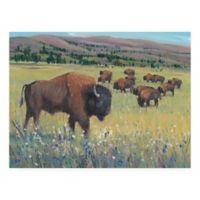 Trademark Fine Art Animals of the West 14-Inch x 19-Inch Canvas Wall Art