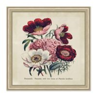 Floral Bouquet I Framed Print Wall Art