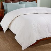 Peace Nest Down & Feather Blend Comforter in White
