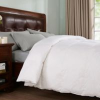 Peace Nest Down King Comforter in White