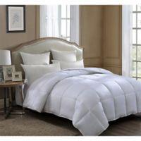 Nature's Softest Plain Weave Full/Queen Comforter in White