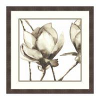 Amanti Art Magnolia I by Cathy Hendrick 28-Inch Square Framed Print