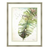 Amanti Art Watercolor Plantain Leaves II 31-Inch x 37-Inch Framed Print