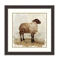 Amanti Art Sheep 29.38-Inch Square Framed Wall Art
