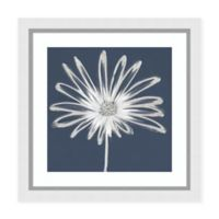 Amanti Art Silver Blooms II 29-Inch Square Framed Print