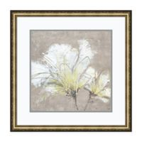 Amanti Art White Flowers II 24-Inch Square Framed Print