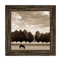 Amanti Art Grazing by Heather Ross 22 -Inch Square Framed Canvas Wall Art